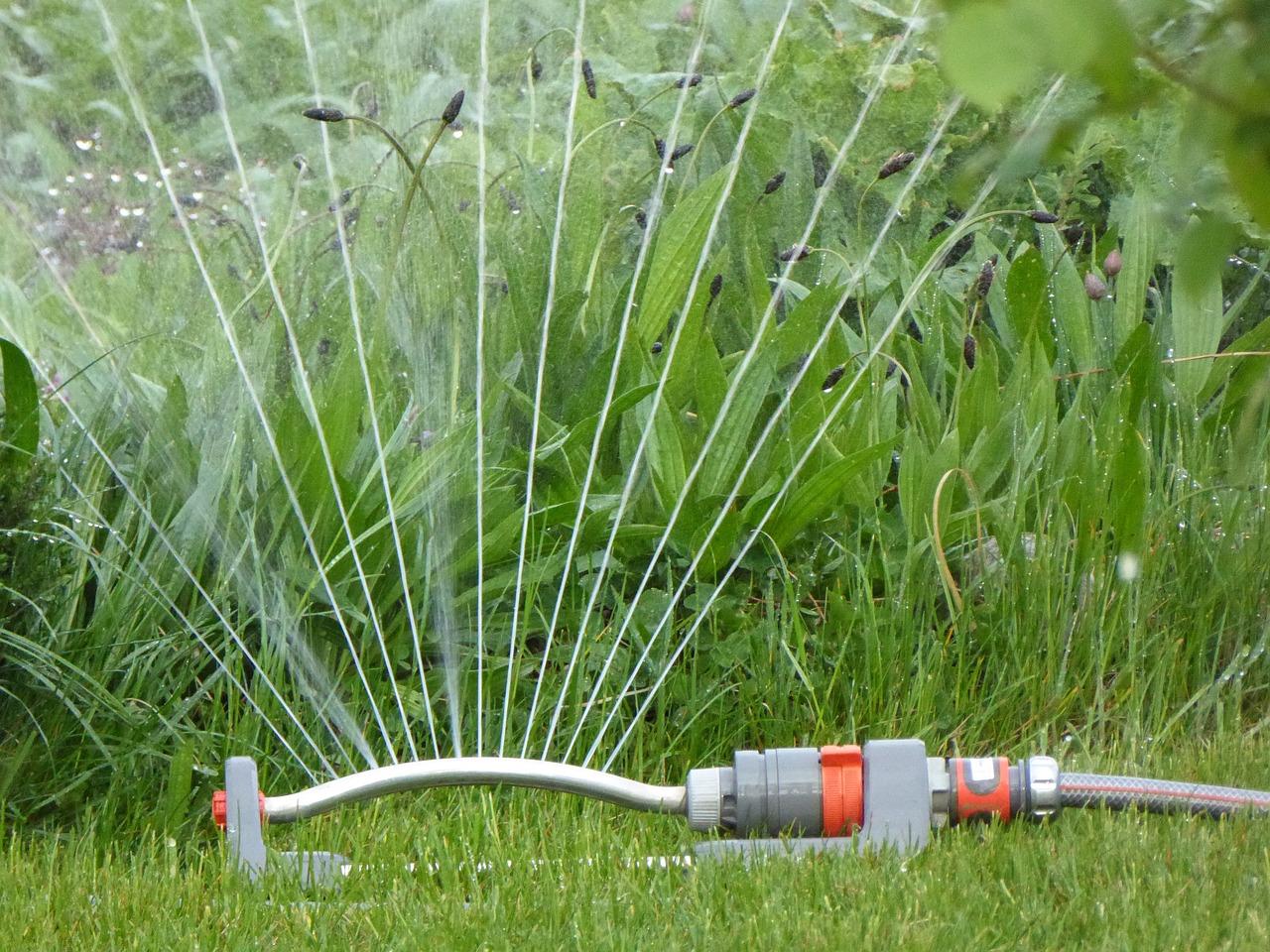 Rush Water Casting Drop Of Water  - EME / Pixabay